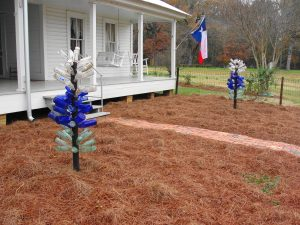 2. Bluebonnet Bottle Trees
