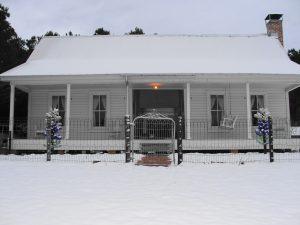 3. Snow in Arcadia
