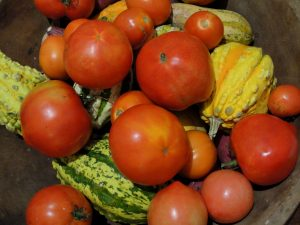 4. Fall tomatoes