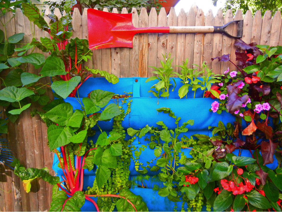 Garden Design - Build a Colorful Niche Garden