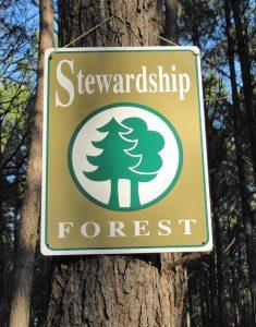 5. Stewardship Forest