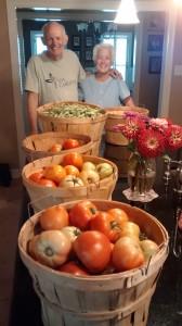 2. Jobe's tomatoes