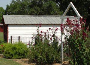 3. Hen house