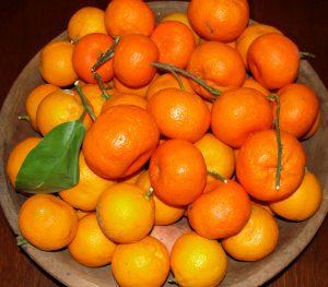 3. Fresh Citrus AG