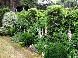 5. Emily's Garden