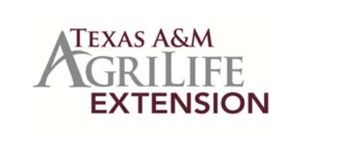 Texas A&M AgriLife to Host Private Spring Garden Tour