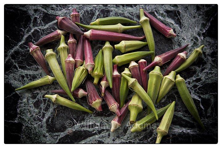 Last of the Warm Season Vegetables