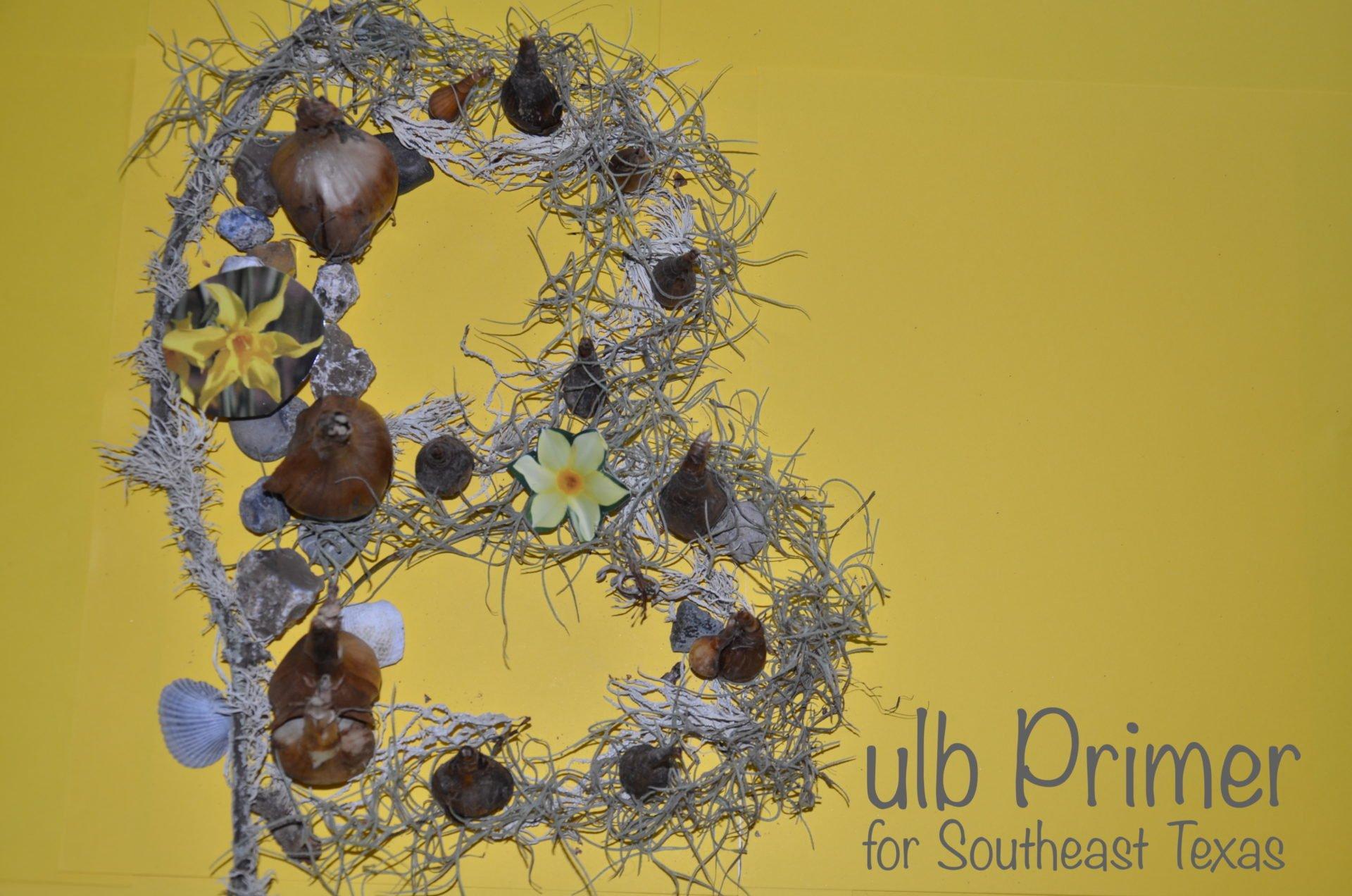 Bulb Primer for Southeast Texas