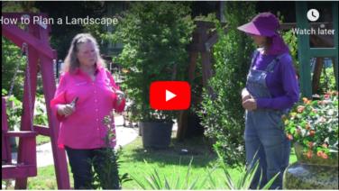 Superieur VIDEO: How To Plan A Landscape