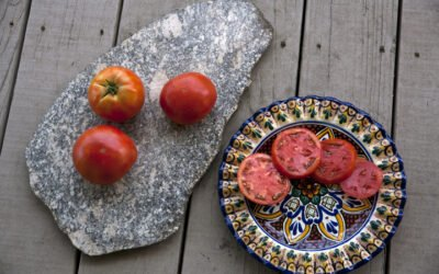 A Wonderful Year for Tomatoes