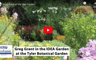 Greg Grant in the IDEA Garden