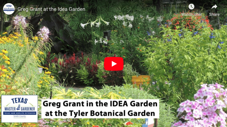 Greg Grant in the IDEA Garden