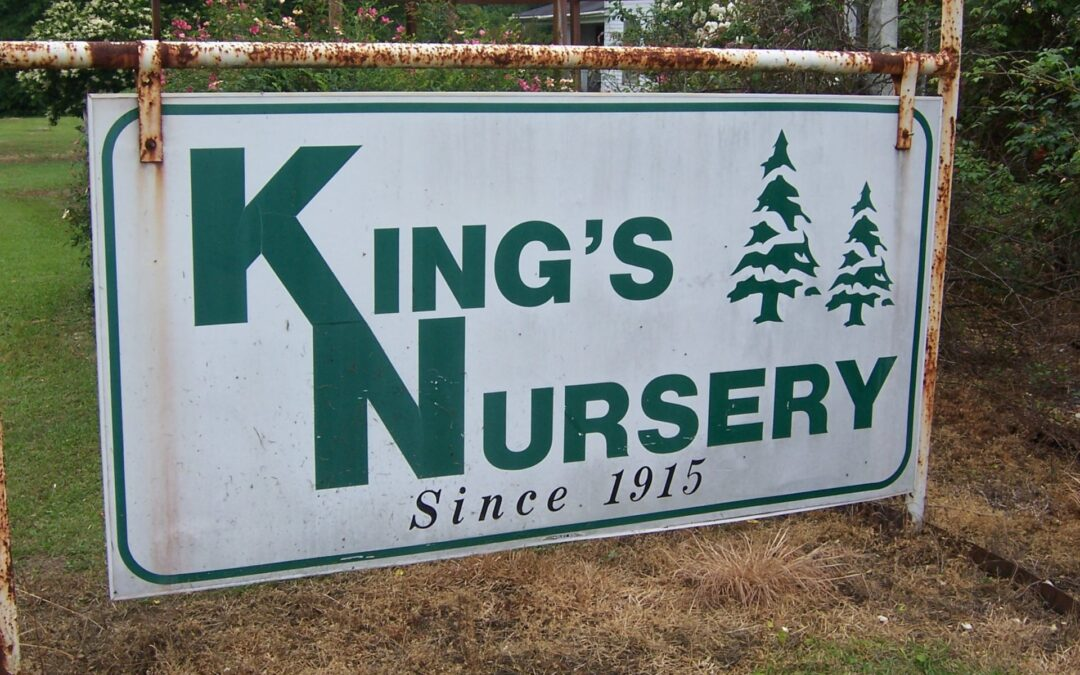 After 105 Years, Another Generation Takes Over at the Legendary King Nursery