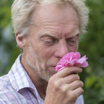 American Rose Society Virtual Class: LANDSCAPING WITH ROSES