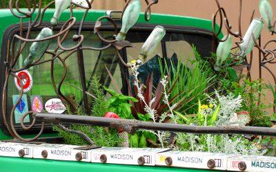 Popular Garden Writer and Horticulturist to Speak in Tyler